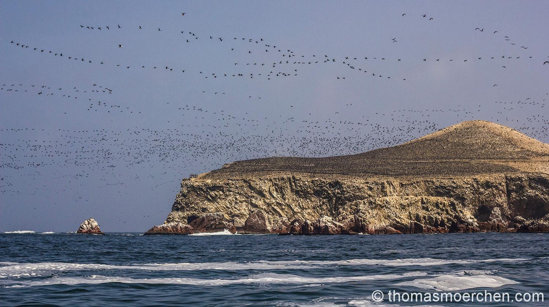 Ein Großteil dieses prachtvollen Berges bestehtaus Guamo, auch bekannt als Vogelscheißee
