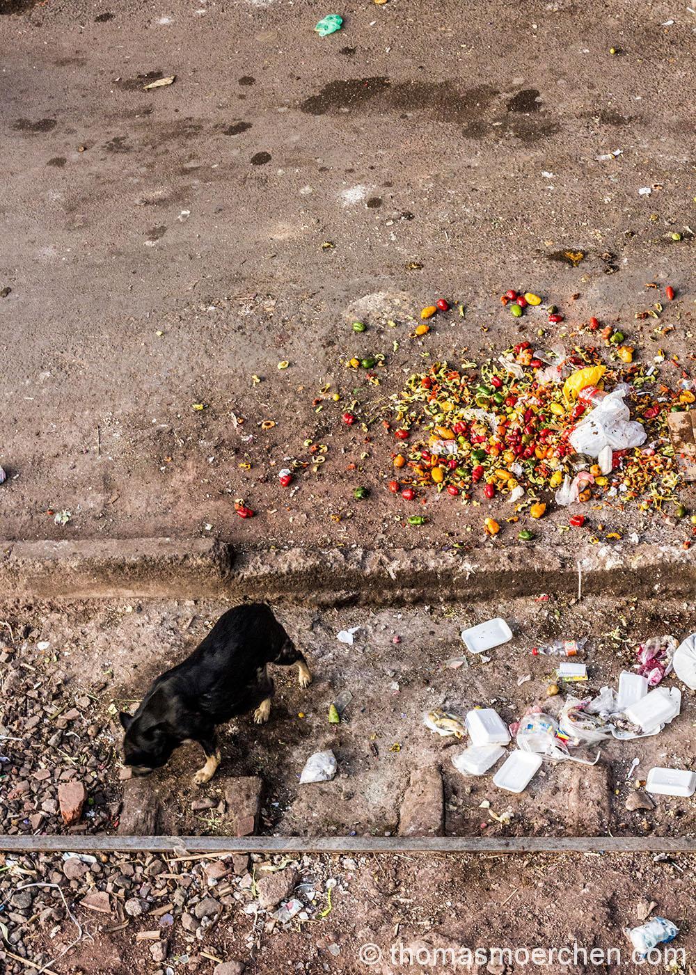 Mit Mülltrennung und Recycling haben sie es hier noch nicht so. Das ist eine ganz normale Strasse außerhalb des historischen Zentrums