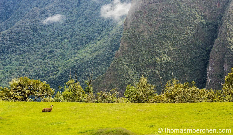 Ausblick vom Machu Picchu
